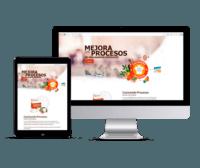 Previsualizacion de la web de cocinando procesos